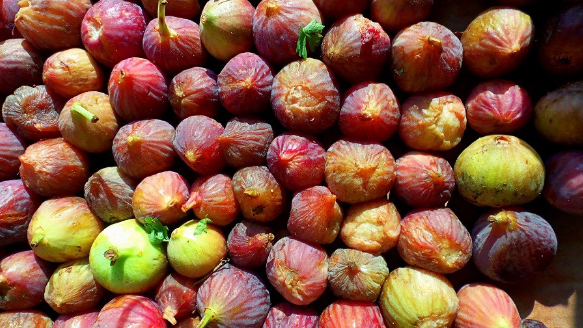 Sweet sweet figs! a great source of energy
