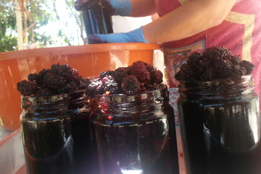 Mulberry Compote_Kherbet Qanafar