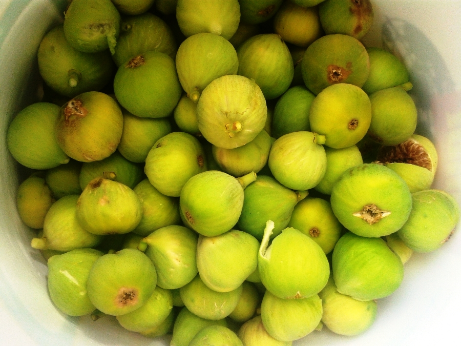 """""""Abou enek"""" or figs with peduncle"""