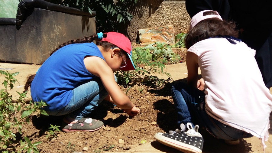 """The little girls planting seeds under the supervision of """"Oum Maher"""" a Syrian mother who is now taking care of the garden"""