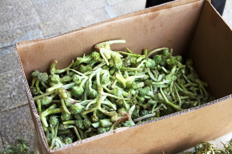 Green Akkoub bought from the market. Photo ©TasteofBeirut